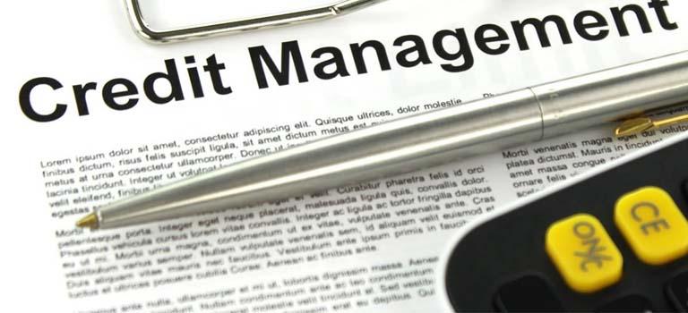 Gestió del Crèdit a clients – Credit management: Mòdul III-Els serveis de tercers que asseguren el cobrament dels crèdits comercials, cobreixen el risc d'impagament o gestionen el cobrament de factures impagades